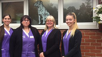 The St Runwalds Vets Receptionist Photo